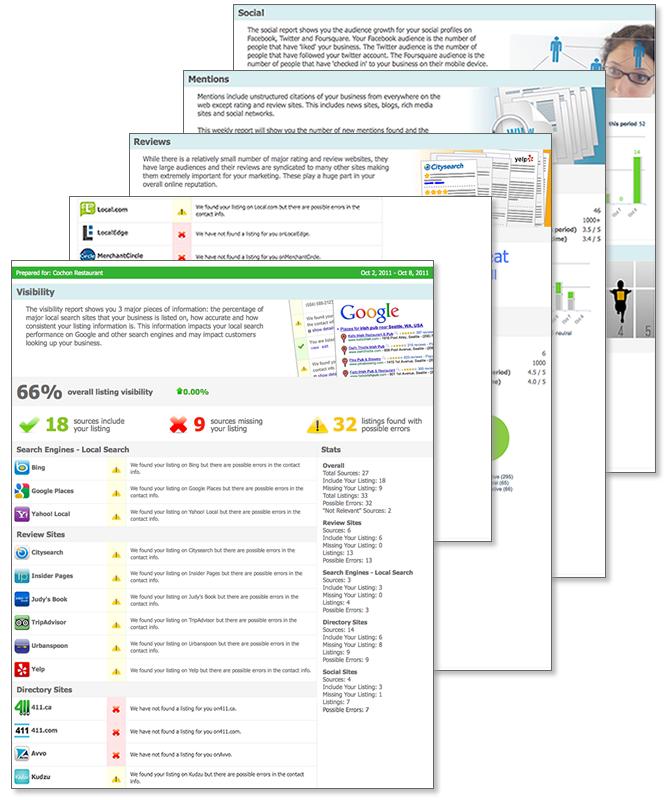 CrucialClicks Reputation Management Screenshot - Report